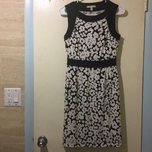 NWT stretchy dress, no liner but not see thru